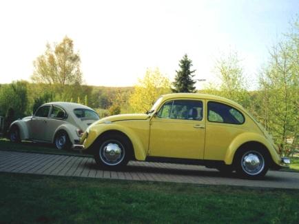 Käfer Ende der 1990er Jahre am Lehmstich