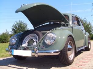 Käfer mit kurzem Vorderwagen (Ovali)